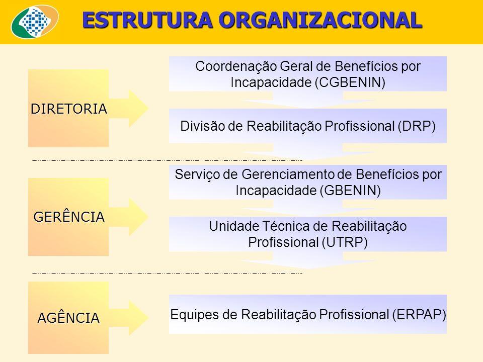ESTRUTURA ORGANIZACIONAL AGÊNCIA Coordenação Geral de Benefícios por Incapacidade (CGBENIN) Divisão de Reabilitação Profissional (DRP) Serviço de Gere