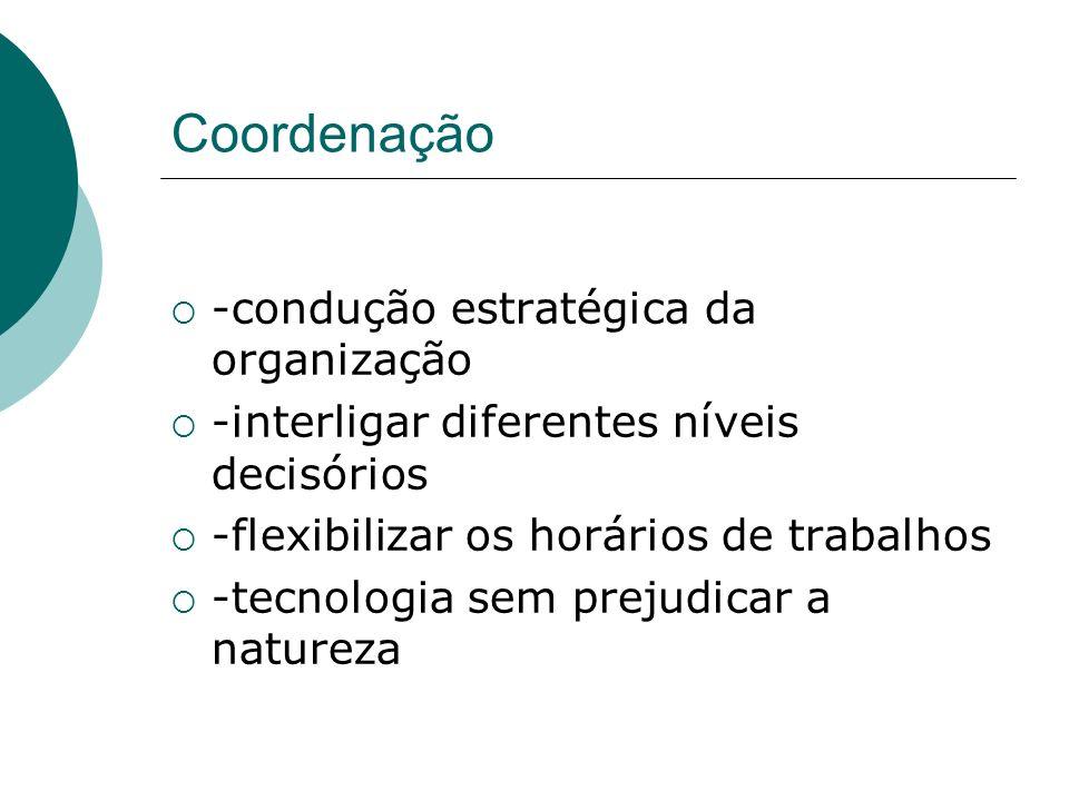 Coordenação -condução estratégica da organização -interligar diferentes níveis decisórios -flexibilizar os horários de trabalhos -tecnologia sem preju