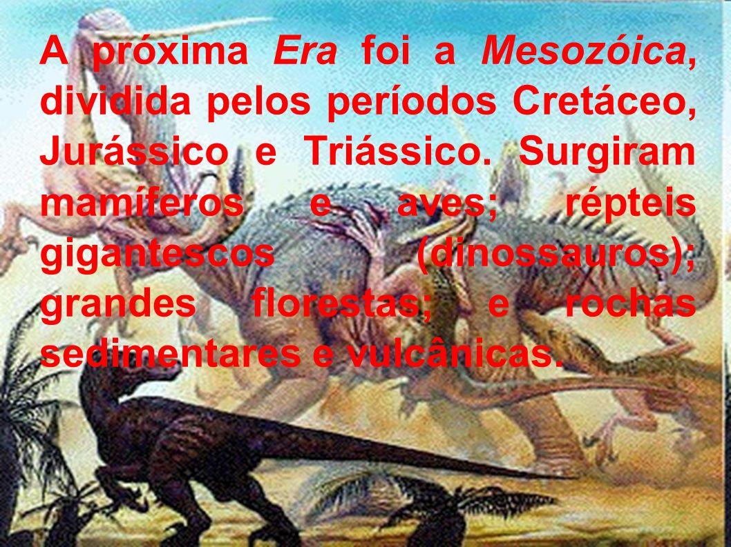 A próxima Era foi a Mesozóica, dividida pelos períodos Cretáceo, Jurássico e Triássico. Surgiram mamíferos e aves; répteis gigantescos (dinossauros);
