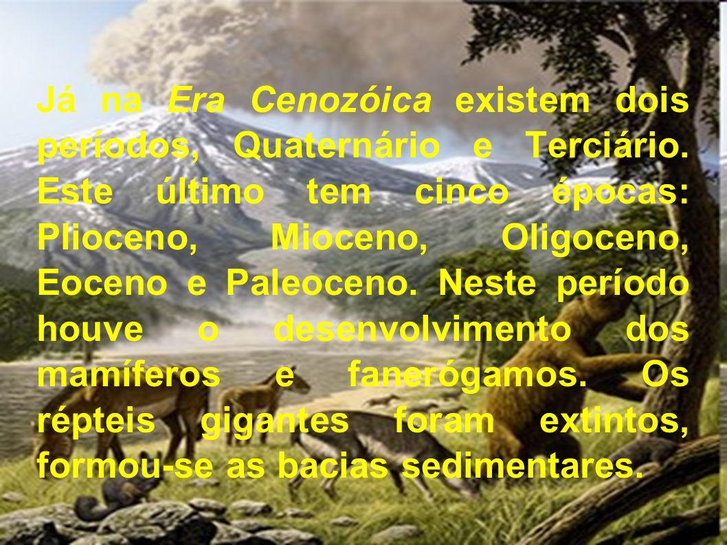 Já na Era Cenozóica existem dois períodos, Quaternário e Terciário. Este último tem cinco épocas: Plioceno, Mioceno, Oligoceno, Eoceno e Paleoceno. Ne