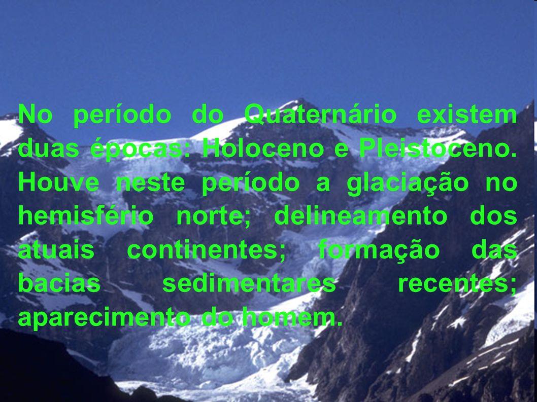 No período do Quaternário existem duas épocas: Holoceno e Pleistoceno. Houve neste período a glaciação no hemisfério norte; delineamento dos atuais co