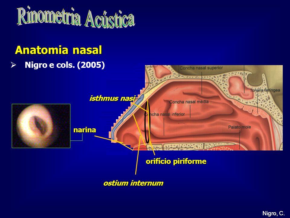 Nigro, C. ostium internum narina isthmus nasi orifício piriforme Anatomia nasal Nigro, C. Nigro e cols. (2005)