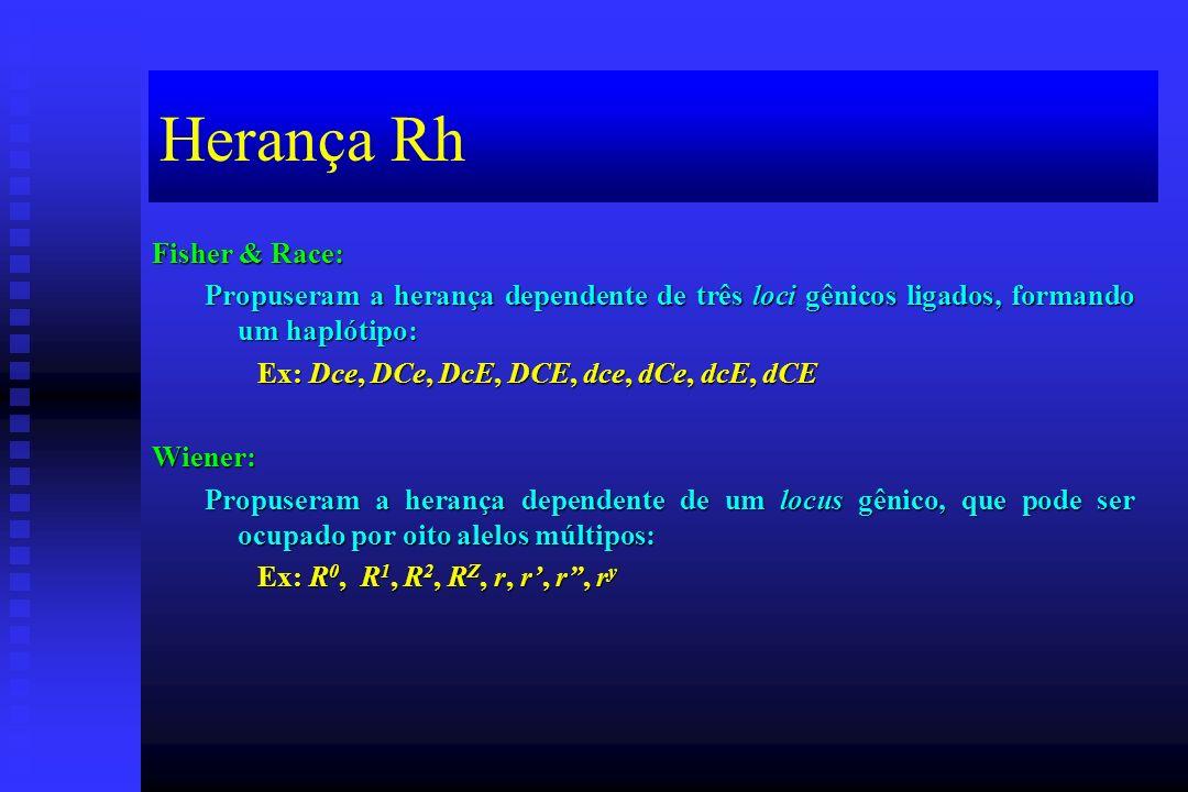 Herança Rh Fisher & Race: Propuseram a herança dependente de três loci gênicos ligados, formando um haplótipo: Ex: Dce, DCe, DcE, DCE, dce, dCe, dcE,