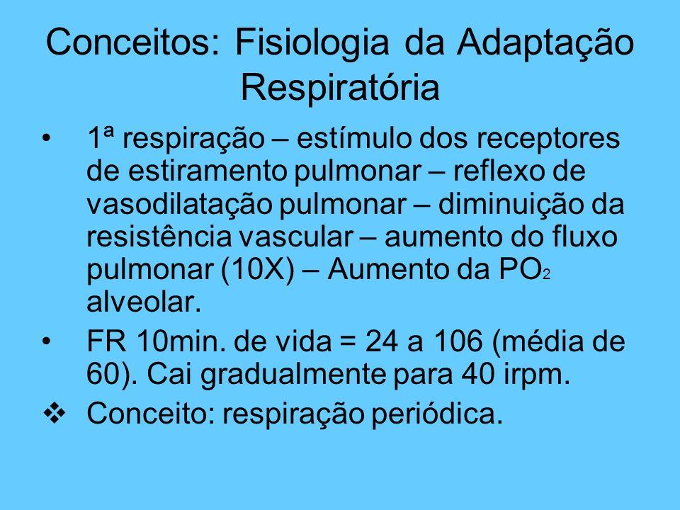 Conceitos: Fisiologia da Adaptação Respiratória 1ª respiração – estímulo dos receptores de estiramento pulmonar – reflexo de vasodilatação pulmonar –