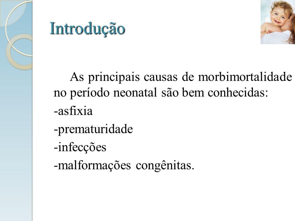 Introdução As principais causas de morbimortalidade no período neonatal são bem conhecidas: -asfixia -prematuridade -infecções -malformações congênita