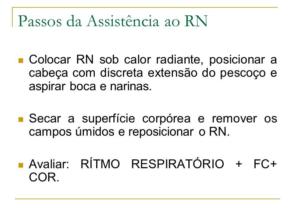 Passos da Assistência ao RN Colocar RN sob calor radiante, posicionar a cabeça com discreta extensão do pescoço e aspirar boca e narinas. Secar a supe