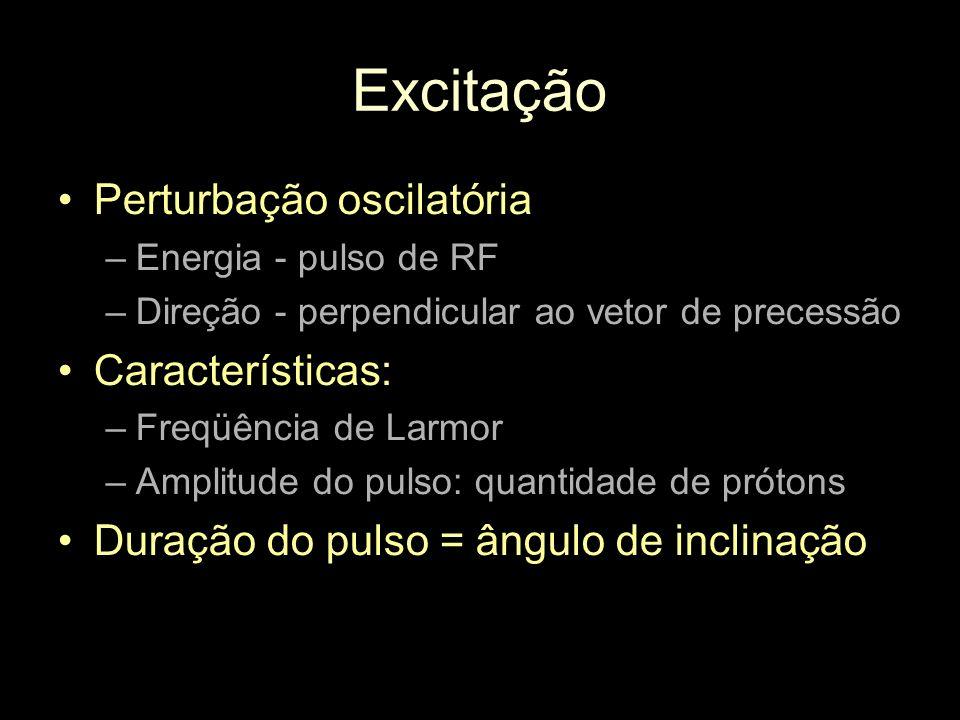 Excitação Perturbação oscilatória –Energia - pulso de RF –Direção - perpendicular ao vetor de precessão Características: –Freqüência de Larmor –Amplit