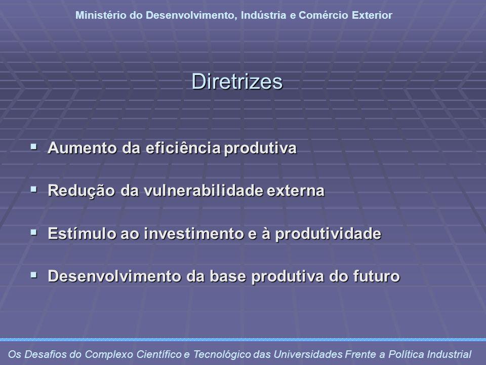 Diretrizes Aumento da eficiência produtiva Aumento da eficiência produtiva Redução da vulnerabilidade externa Redução da vulnerabilidade externa Estím