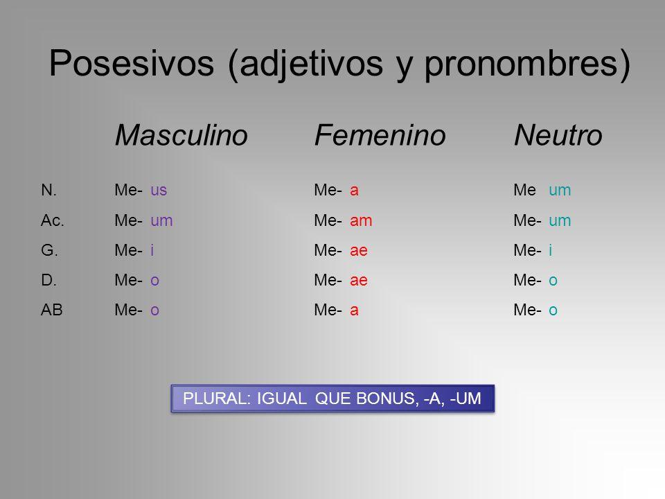 Posesivos (adjetivos y pronombres) MasculinoFemeninoNeutro N.