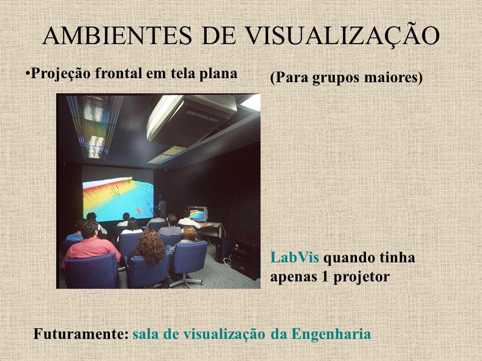 AMBIENTES DE VISUALIZAÇÃO Projeção frontal em tela plana (Para grupos maiores) LabVis quando tinha apenas 1 projetor Futuramente: sala de visualização da Engenharia