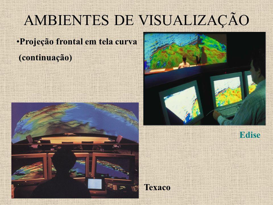 AMBIENTES DE VISUALIZAÇÃO Projeção frontal em tela curva (continuação) Edise Texaco