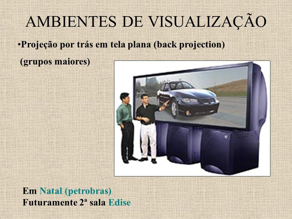AMBIENTES DE VISUALIZAÇÃO Projeção por trás em tela plana (back projection) (grupos maiores) Em Natal (petrobras) Futuramente 2ª sala Edise