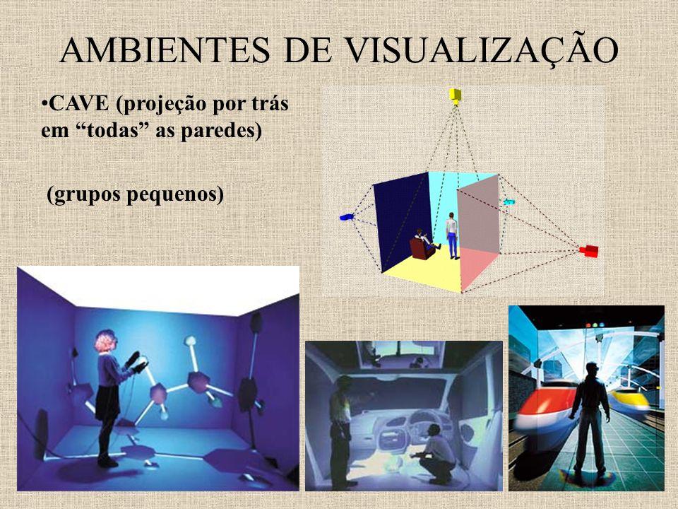 AMBIENTES DE VISUALIZAÇÃO CAVE (projeção por trás em todas as paredes) (grupos pequenos)