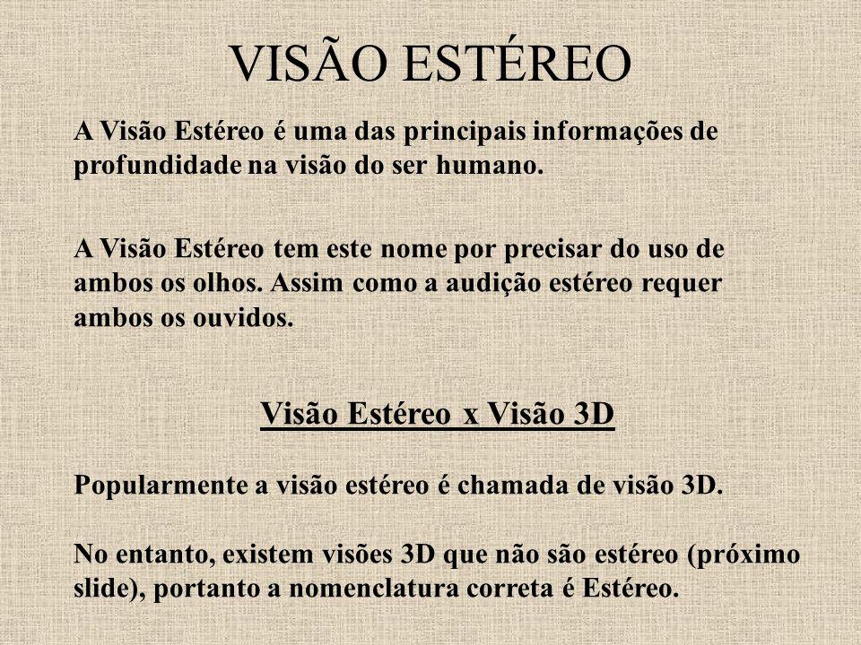 VISÃO ESTÉREO A Visão Estéreo tem este nome por precisar do uso de ambos os olhos. Assim como a audição estéreo requer ambos os ouvidos. Visão Estéreo