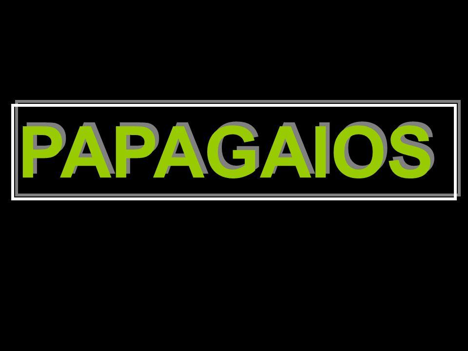 PAPAGAIOS PAPAGAIOS