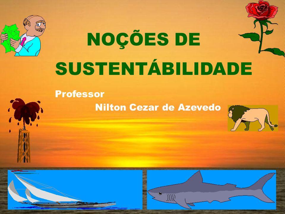 NOÇÕES DE SUSTENTÁBILIDADE Professor Nilton Cezar de Azevedo