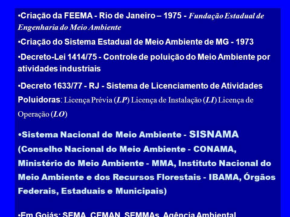 Criação da FEEMA - Rio de Janeiro – 1975 - Fundação Estadual de Engenharia do Meio Ambiente Criação do Sistema Estadual de Meio Ambiente de MG - 1973
