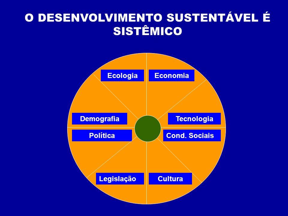 O DESENVOLVIMENTO SUSTENTÁVEL É SISTÊMICO EcologiaEconomia LegislaçãoCultura DemografiaTecnologia PolíticaCond. Sociais