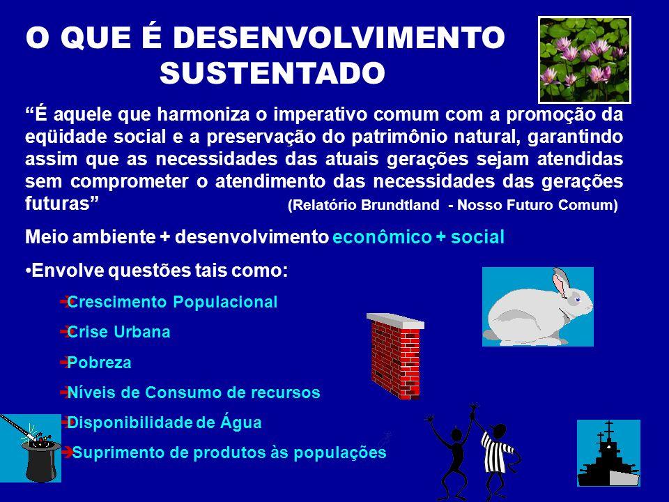 O QUE É DESENVOLVIMENTO SUSTENTADO É aquele que harmoniza o imperativo comum com a promoção da eqüidade social e a preservação do patrimônio natural,