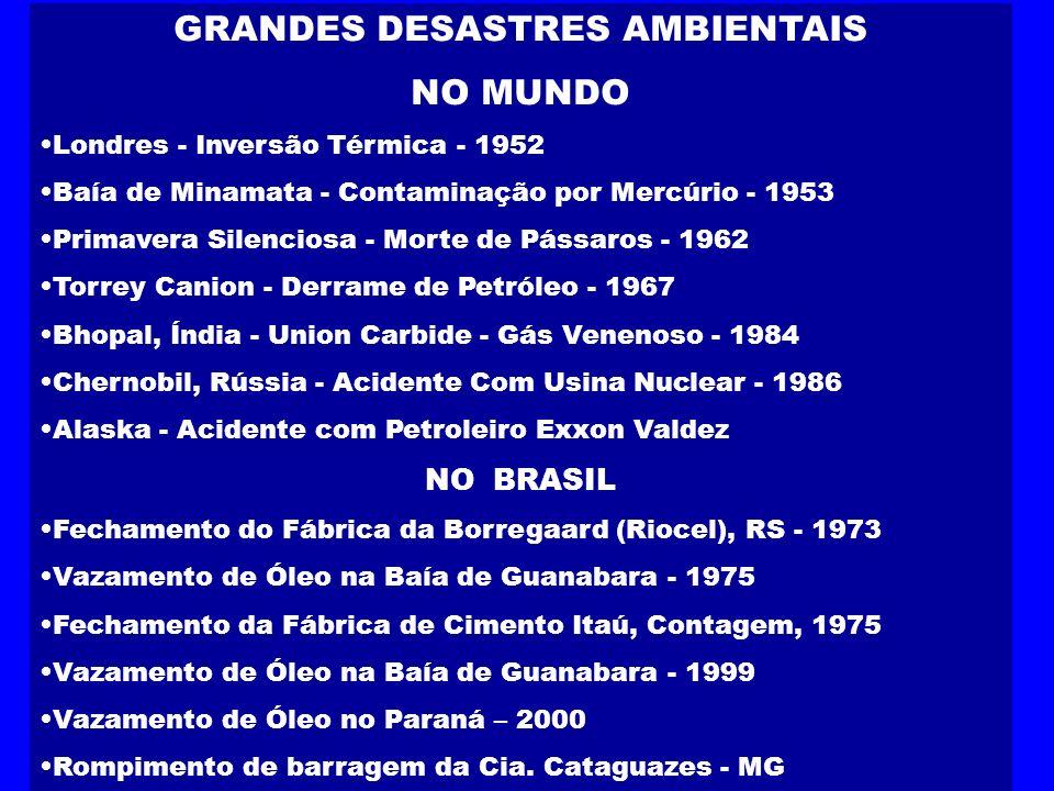 GRANDES DESASTRES AMBIENTAIS NO MUNDO Londres - Inversão Térmica - 1952 Baía de Minamata - Contaminação por Mercúrio - 1953 Primavera Silenciosa - Mor