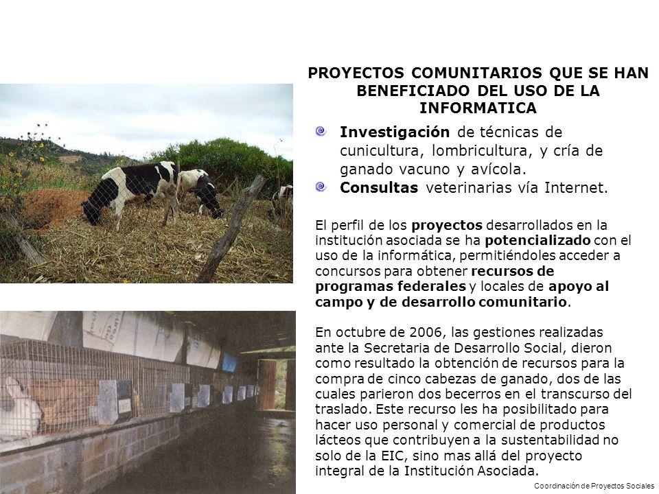 PROYECTOS COMUNITARIOS QUE SE HAN BENEFICIADO DEL USO DE LA INFORMATICA Investigación de técnicas de cunicultura, lombricultura, y cría de ganado vacu