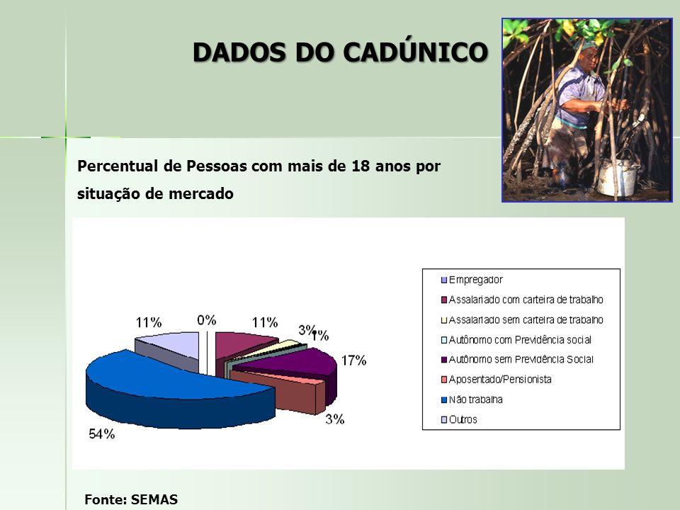 Percentual de Pessoas com mais de 18 anos por situação de mercado Fonte: SEMAS DADOS DO CADÚNICO