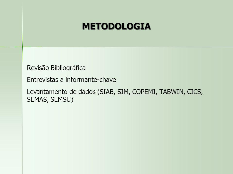 METODOLOGIA Revisão Bibliográfica Entrevistas a informante-chave Levantamento de dados (SIAB, SIM, COPEMI, TABWIN, CICS, SEMAS, SEMSU)