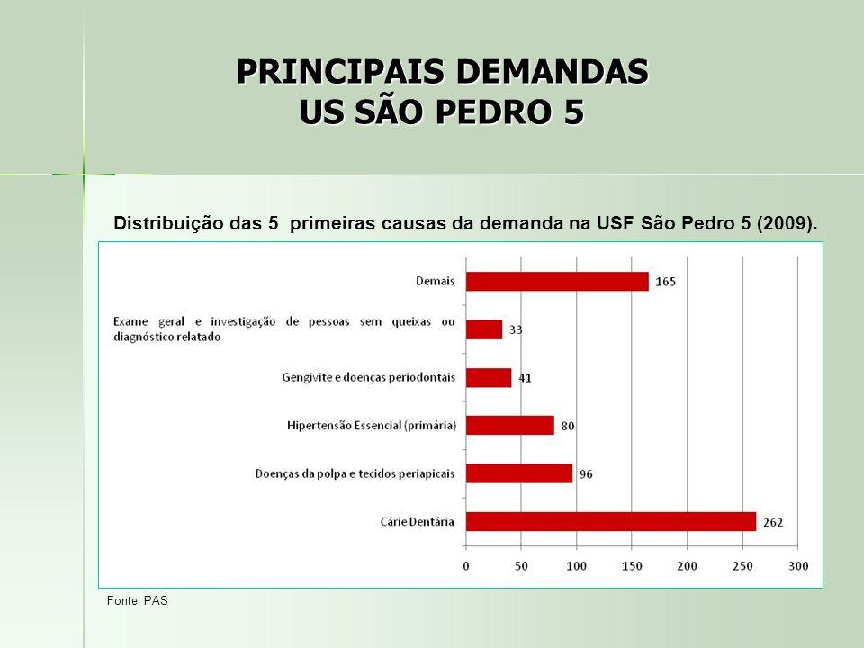 Distribuição das 5 primeiras causas da demanda na USF São Pedro 5 (2009). Fonte: PAS PRINCIPAIS DEMANDAS US SÃO PEDRO 5