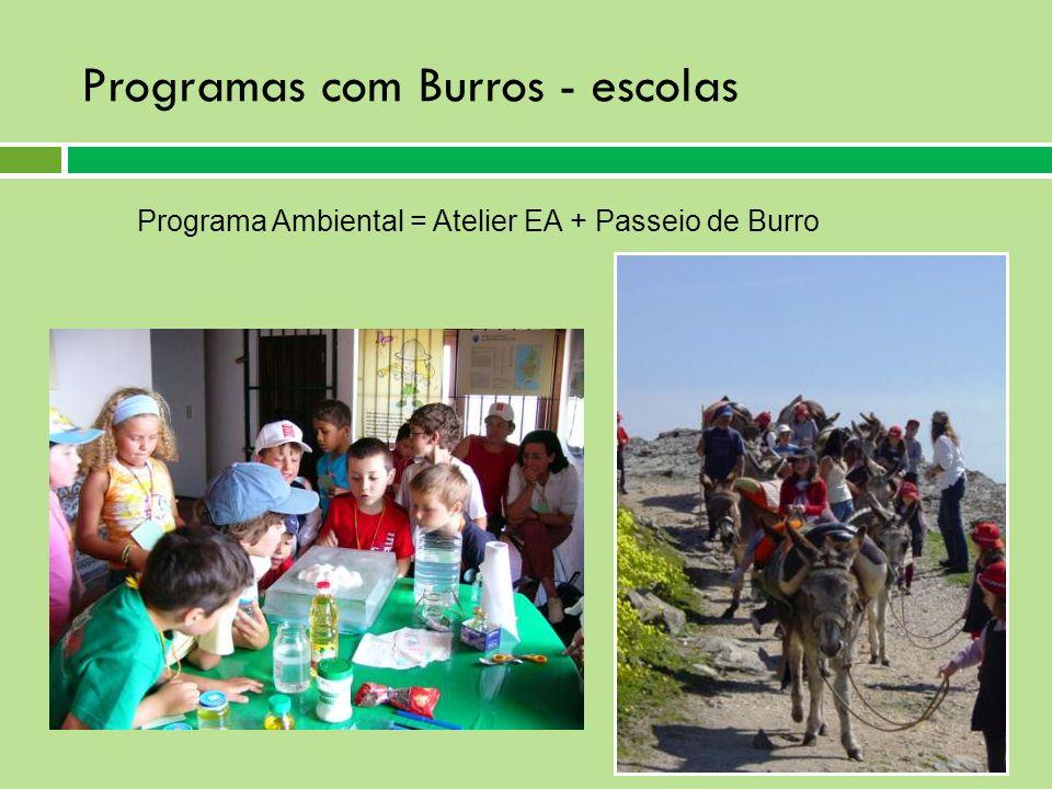 Programas com Burros - escolas Programa Ambiental = Atelier EA + Passeio de Burro