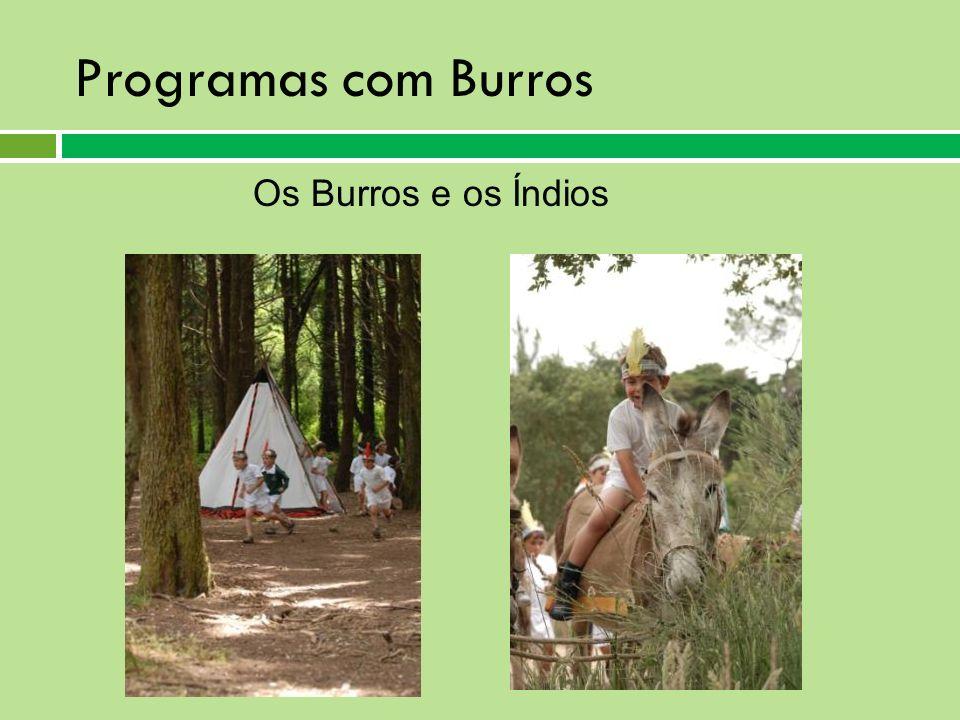 Programas com Burros Os Burros e os Índios