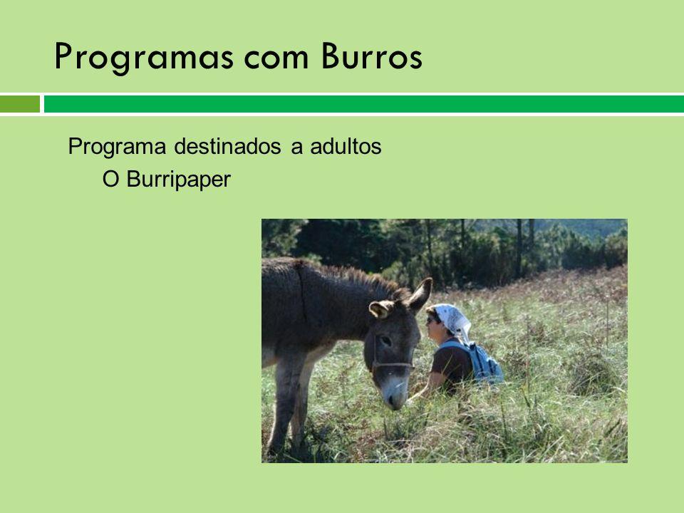 Programas com Burros Programa destinados a adultos O Burripaper