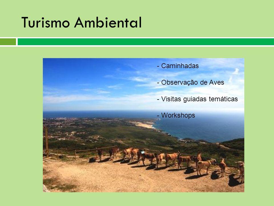 Turismo Ambiental - Caminhadas - Observação de Aves - Visitas guiadas temáticas - Workshops