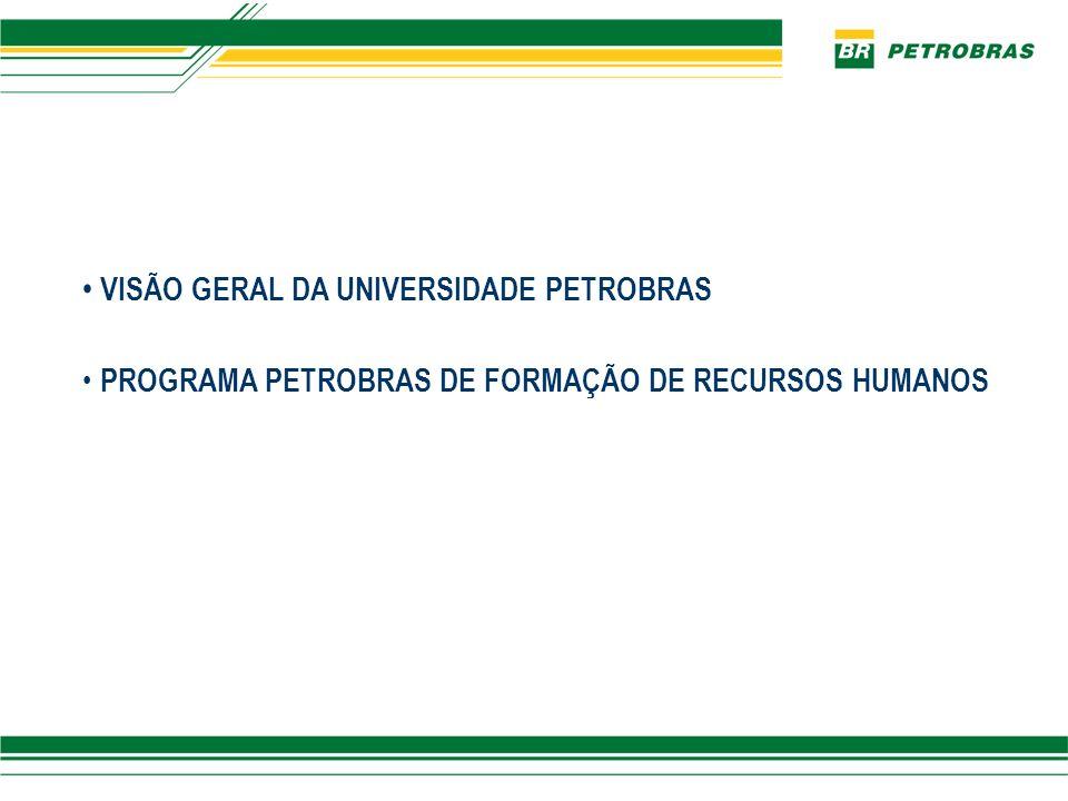 Universidade Petrobras PROGRAMA DE FORMAÇÃO ÁREA INTERNACIONAL ESCOLA DE CIÊNCIAS E TECNOLOGIAS GÁS E ENERGIA ESCOLA DE ENGENHARIA E TECNOLOGIAS ESCOLA DE CIÊNCIAS E TECNOLOGIAS E&P ESCOLA DE CIÊNCIAS E TECNOLOGIAS ABASTECIMENTO ESCOLA DE GESTÃO E NEGÓCIOS SUPORTE À EDUCAÇÃO SUPORTE À GESTÃO CAMPUS RIO – SÃO PAULO CAMPUS SALVADOR- TAQUIPE ESCOLA TÉCNICA Recursos Humanos Presidência Estrutura