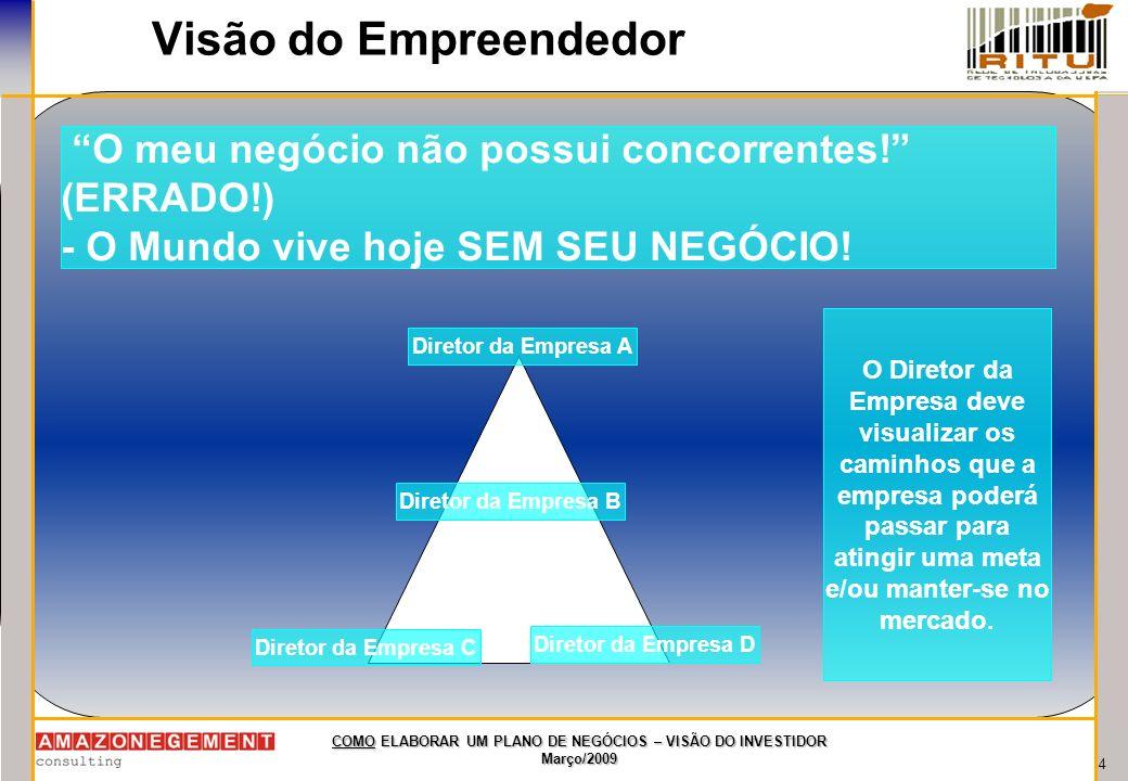 4 COMO ELABORAR UM PLANO DE NEGÓCIOS – VISÃO DO INVESTIDOR Março/2009 Visão do Empreendedor O meu negócio não possui concorrentes! (ERRADO!) - O Mundo