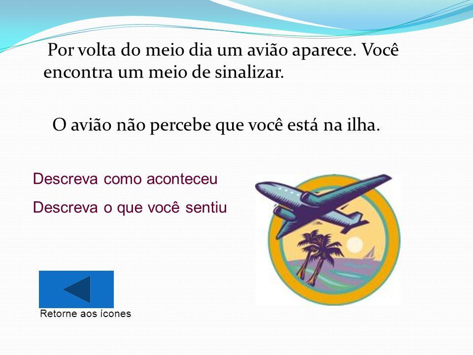 Por volta do meio dia um avião aparece. Você encontra um meio de sinalizar. O avião não percebe que você está na ilha. Descreva como aconteceu Descrev