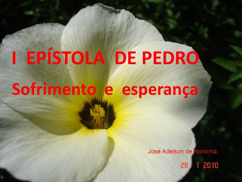 I EPÍSTOLA DE PEDRO José Adelson de Noronha I EPÍSTOLA DE PEDRO Sofrimento e esperança José Adelson de Noronha