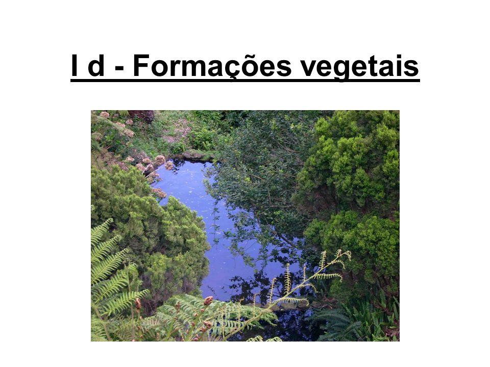 I d - Formações vegetais