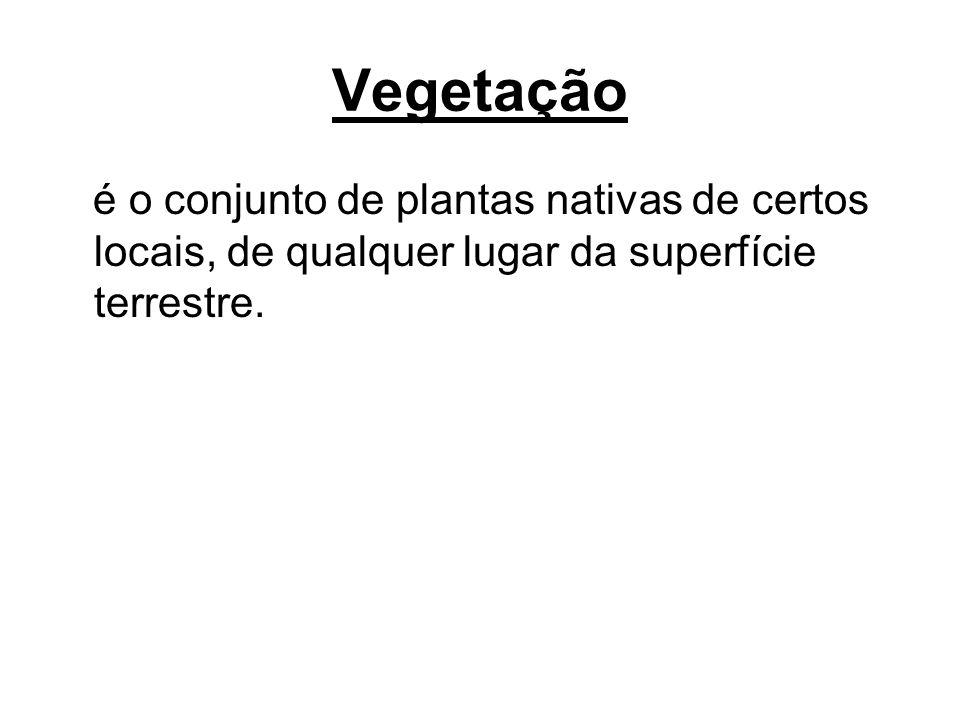 As vegetações para se desenvolver necessitam de algumas condições tais como: Luz Calor Umidade Solo Água