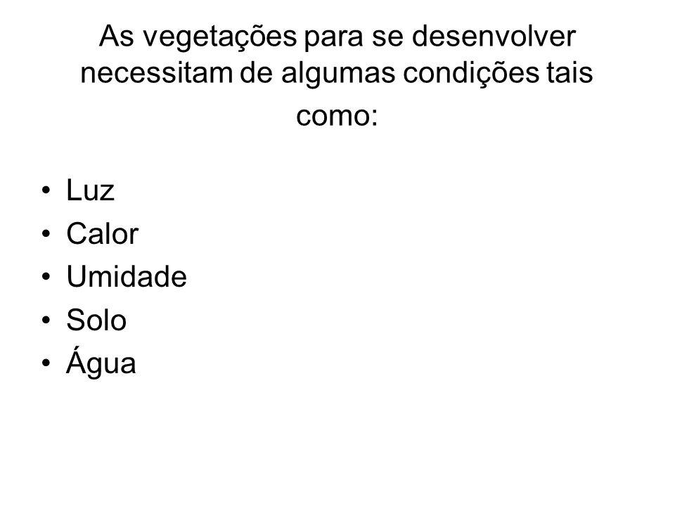 Alem de possibilitar a existência de vegetação esses fatores também condicionam suas características.