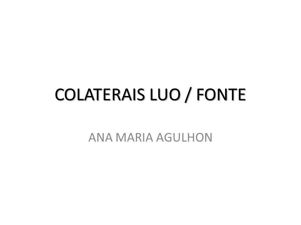 COLATERAIS LUO / FONTE ANA MARIA AGULHON