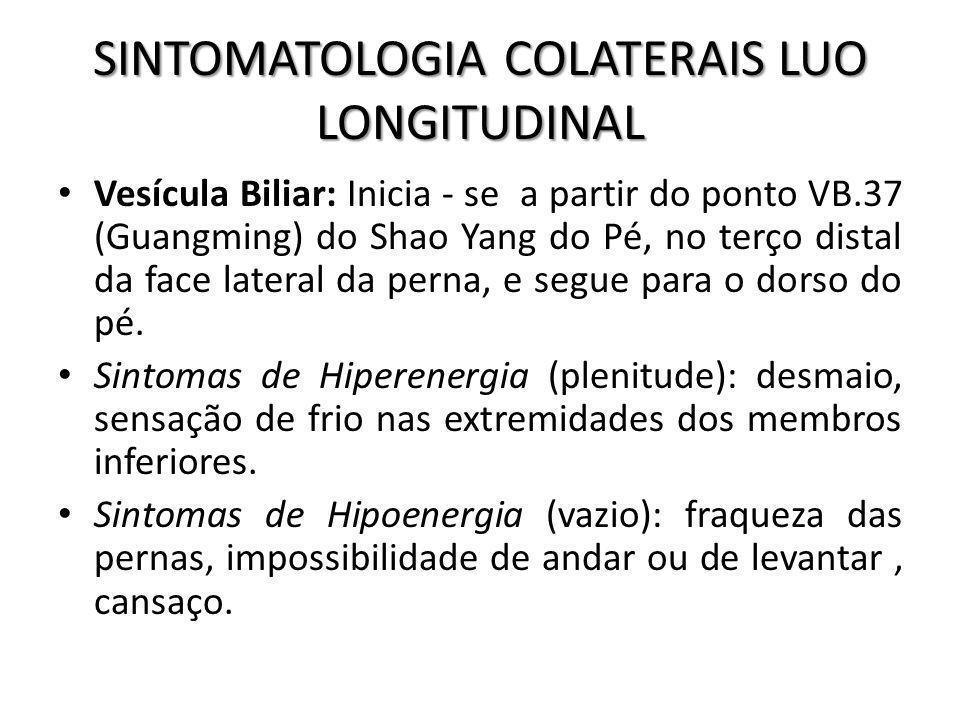 SINTOMATOLOGIA COLATERAIS LUO LONGITUDINAL Vesícula Biliar: Inicia - se a partir do ponto VB.37 (Guangming) do Shao Yang do Pé, no terço distal da fac