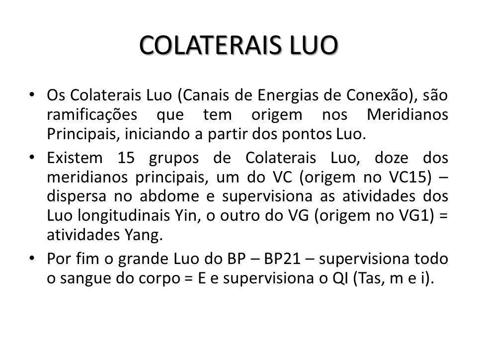 COLATERAIS LUO Os Colaterais Luo (Canais de Energias de Conexão), são ramificações que tem origem nos Meridianos Principais, iniciando a partir dos po