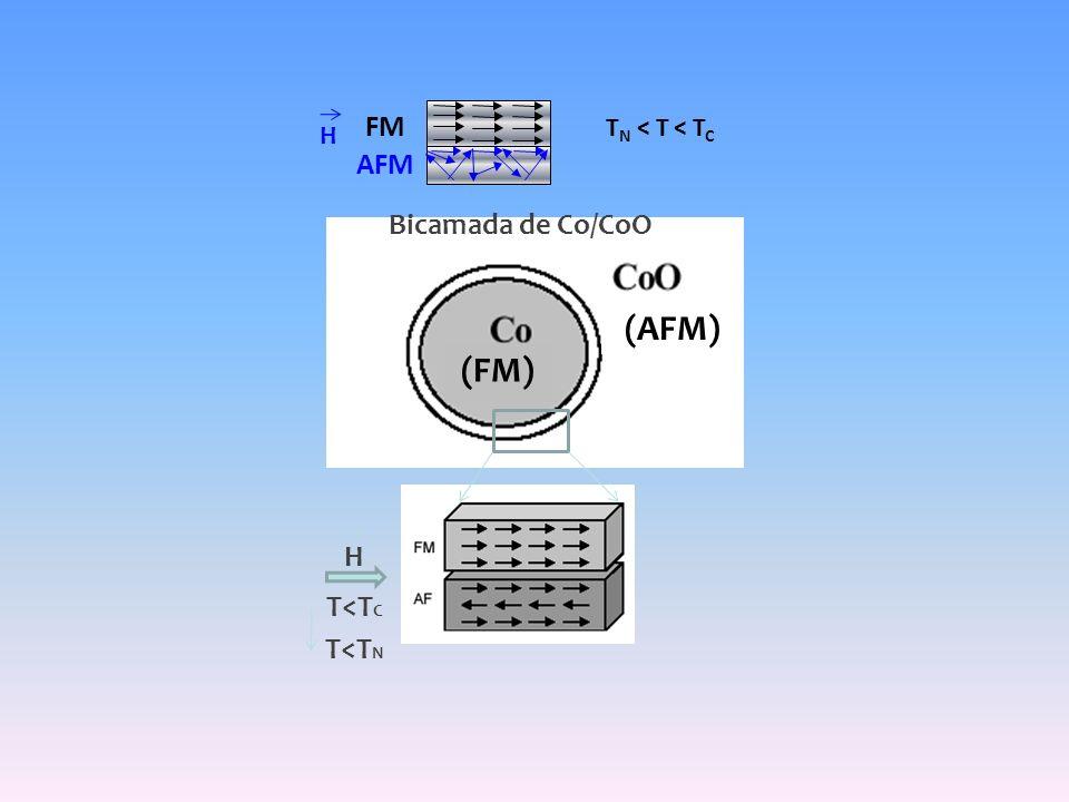 (FM) (AFM) Bicamada de Co/CoO H T<T C T<T N FM AFM T N < T < T C H