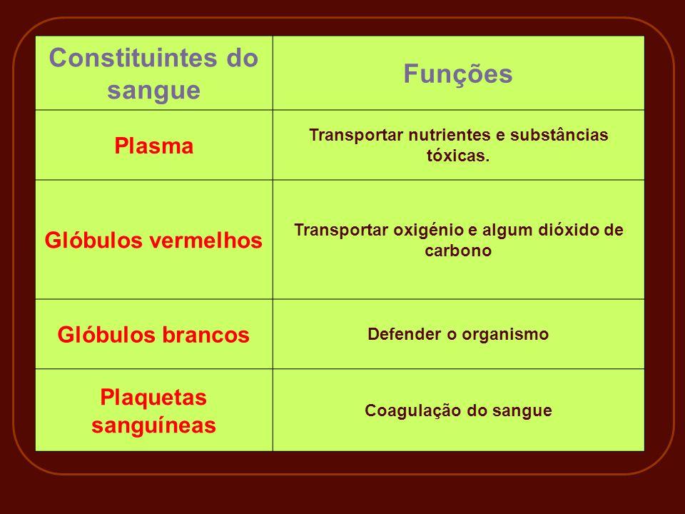 Constituintes do sangue Funções Plasma Transportar nutrientes e substâncias tóxicas. Glóbulos vermelhos Transportar oxigénio e algum dióxido de carbon