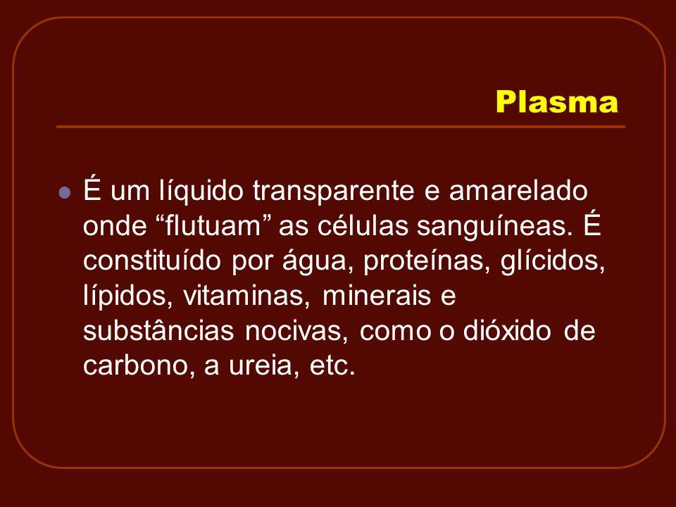 Plasma É um líquido transparente e amarelado onde flutuam as células sanguíneas. É constituído por água, proteínas, glícidos, lípidos, vitaminas, mine