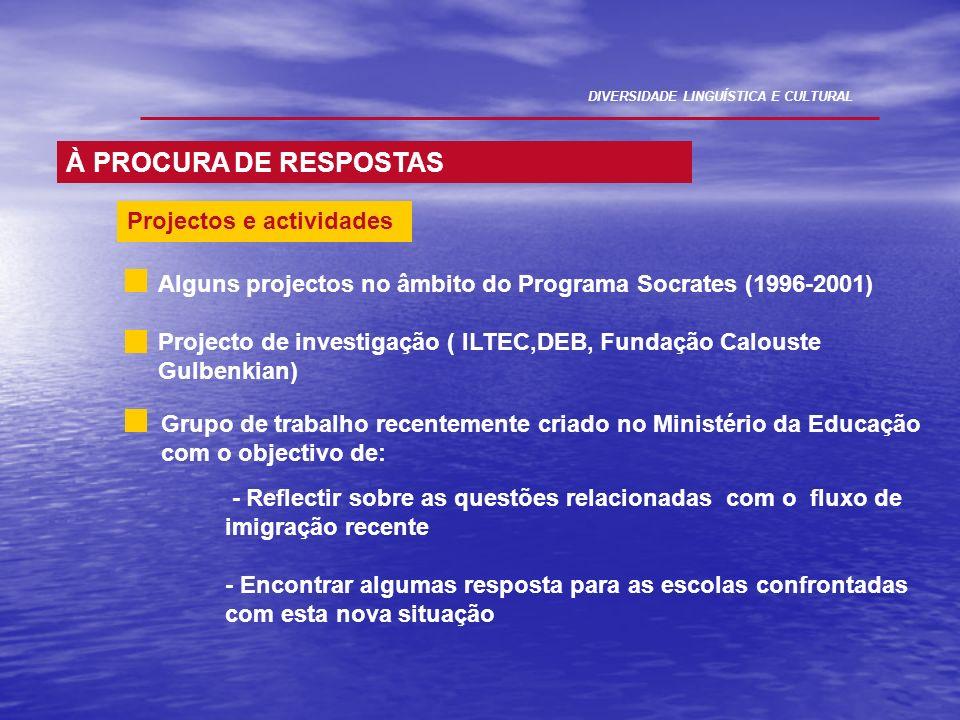 Alguns projectos no âmbito do Programa Socrates (1996-2001) Projecto de investigação ( ILTEC,DEB, Fundação Calouste Gulbenkian) Grupo de trabalho rece