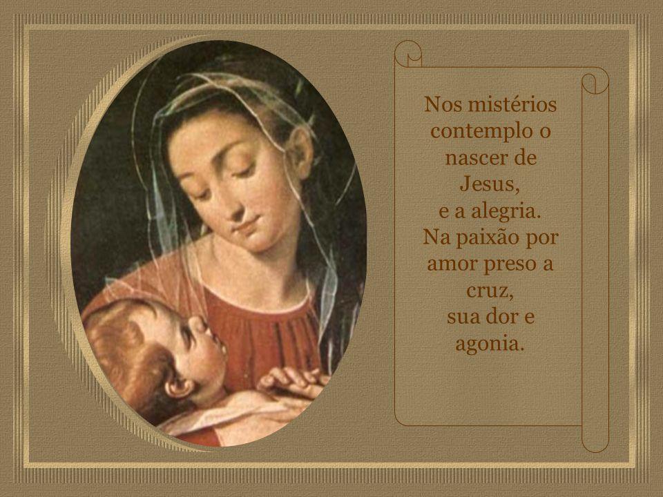 Nos mistérios contemplo o nascer de Jesus, e a alegria.