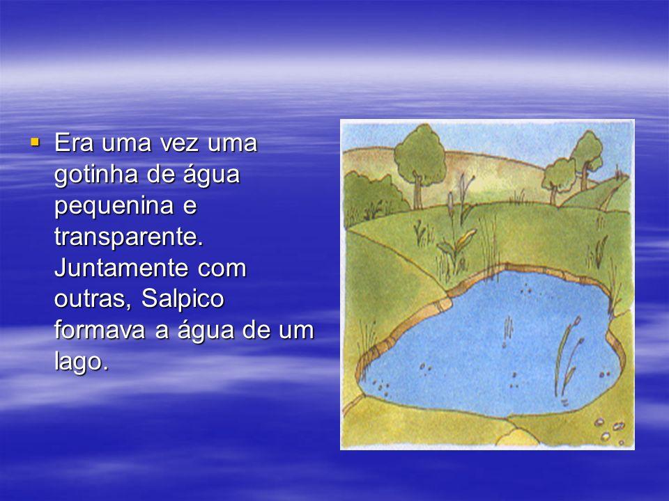 Era uma vez uma gotinha de água pequenina e transparente. Juntamente com outras, Salpico formava a água de um lago. Era uma vez uma gotinha de água pe