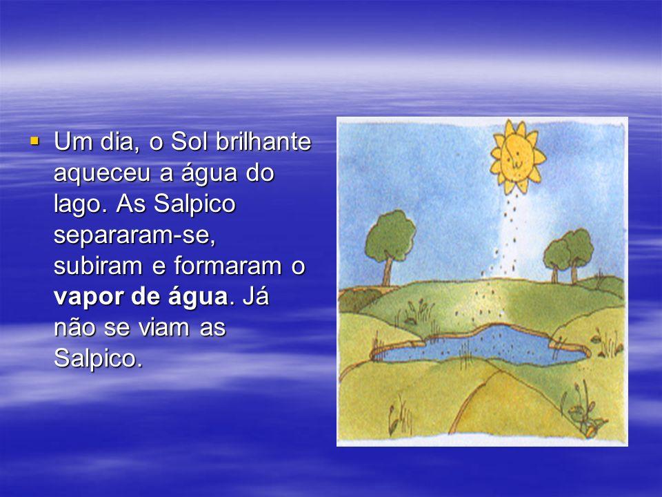 Um dia, o Sol brilhante aqueceu a água do lago. As Salpico separaram-se, subiram e formaram o vapor de água. Já não se viam as Salpico. Um dia, o Sol