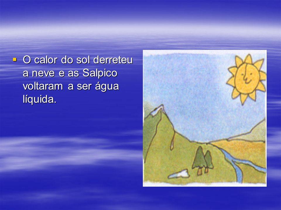 O calor do sol derreteu a neve e as Salpico voltaram a ser água líquida. O calor do sol derreteu a neve e as Salpico voltaram a ser água líquida.